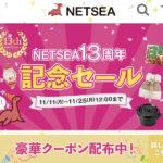 割引されただけ利益アップ。NETSEAのクーポンは絶対に使うべき。