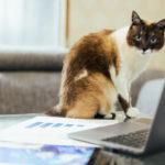 外注さんとの業務委託契約書は作るべきか?